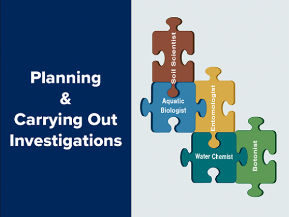 Planning and Carrying Out Investigations