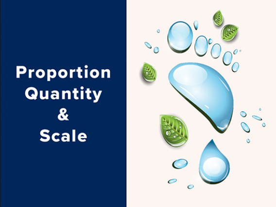 Proportion, Quantity, and Scale