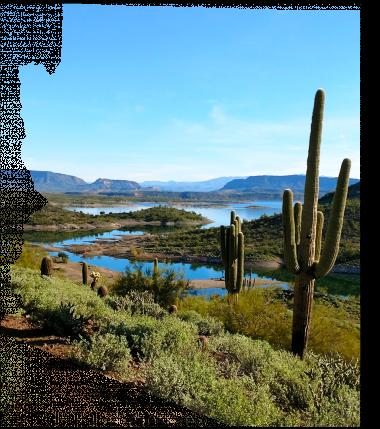 Graphic of desert in Arizona shape.